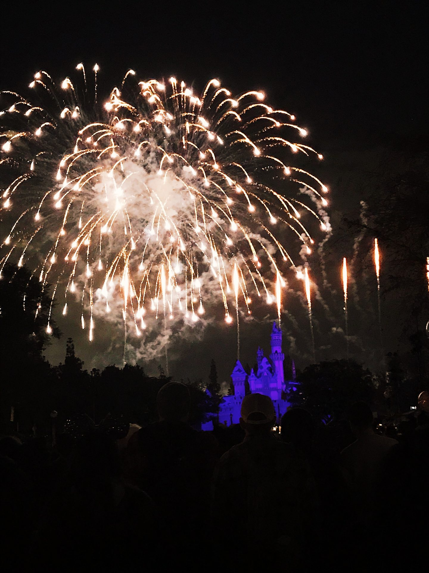 Watching the fireworks at Cinderella's castle at Disneyland in Los Angeles