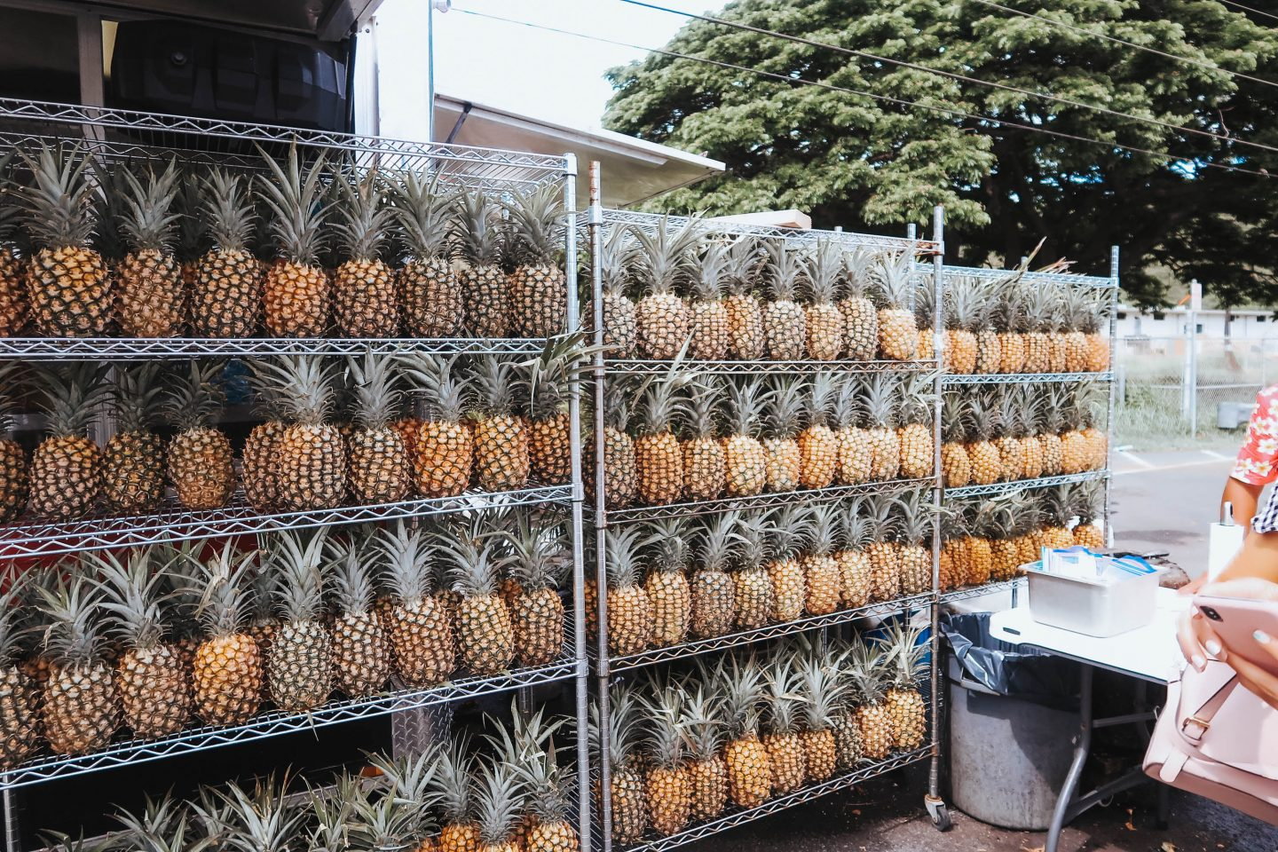 Fresh pineapples at a stall in Oahu North Shore Hawaii