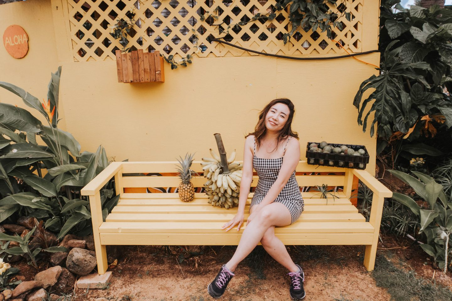 Cute yellow bench at the Sunrise Shack on the way to the North Shore Oahu Hawaii