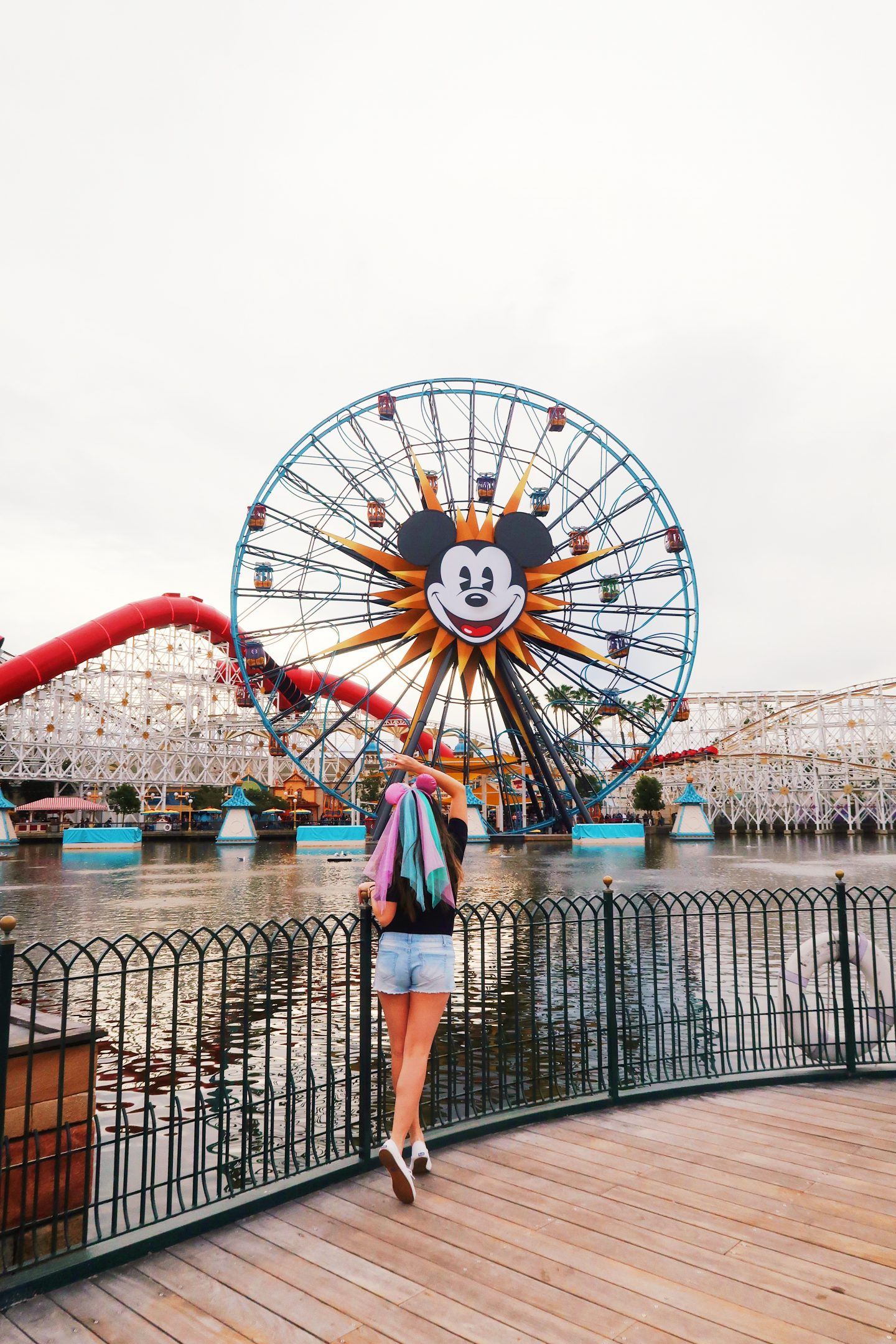View of the Disneyland Pier in Los Angeles